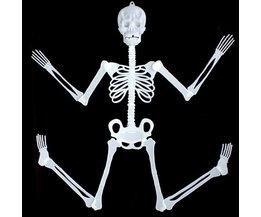 Skeletten Lichtgevend