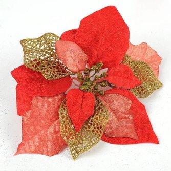 Rode Kerst Bloem