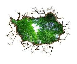 Jungle Sticker 3D