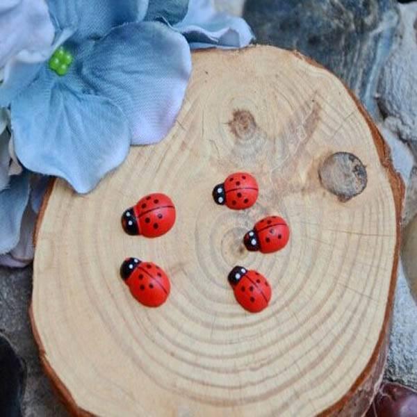 Lieveheersbeestje knutselen kopen i myxlshop for Decoratie knutselen
