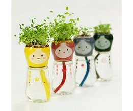 Plantenpotjes Pop