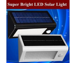 LED Lamp Sensor
