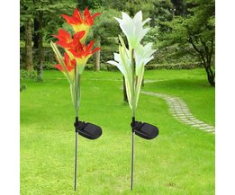 Bloem Verlichting op Zonne Energie (2 Kleuren)