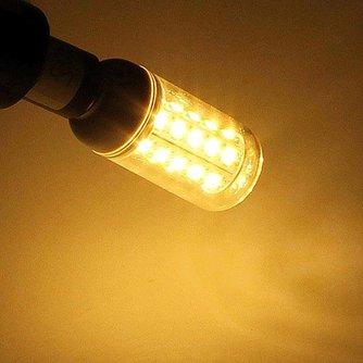 Maïslamp