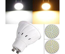 GU10 Spot LED Lamp