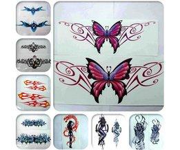 Auto Decoratie Stickers