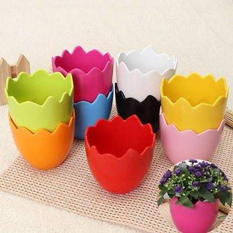 Kleine Bloempotjes In de Vorm Van Een Eierschaal