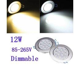 Dimbare Plafondverlichting 12W