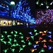 Feestelijke LED Verlichting