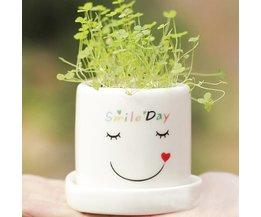Klein Lachend Plantenpotje met Zuiverend Gras