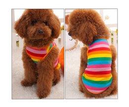 Regenboog T-shirt Voor Honden