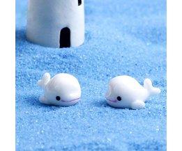 Miniaturen Dolfijn