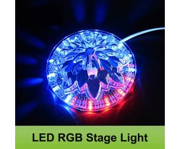 Podium Licht Zonnebloem LED