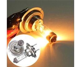 Halogeenlamp Voor Je Auto