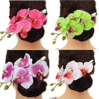 Orchidee voor in Haar