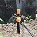 Tuin Irrigatie Sproeier