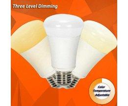 Dimbare Smart Lamp