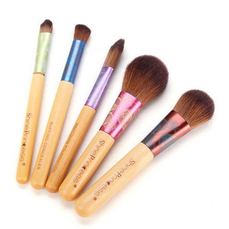 Set Make-Up Brushes (5 Stuks)