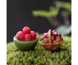Miniaturen Huis En Tuin