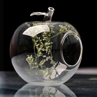 Appelvormige Glasvaas voor je eigen Microlandschap