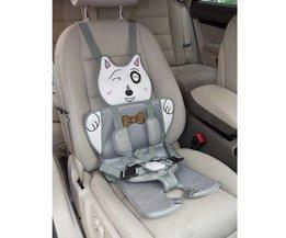 Kinderzitje Voor Auto