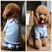 Polo Trui Voor Honden