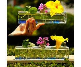 Cilindervormige Glasvaas 26 x 6 CM