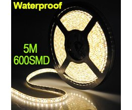LED Strip Met 600 Lampjes