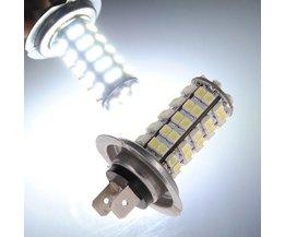 H7 Lamp Auto