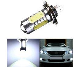 H7 Autolamp