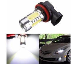 H11 LED Lamp