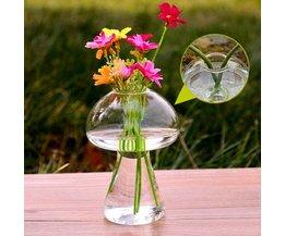Leuke Paddestoelvormige Vaas van Glas