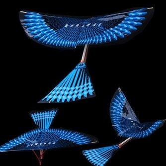 Vlieger Vogel Zonder Touw