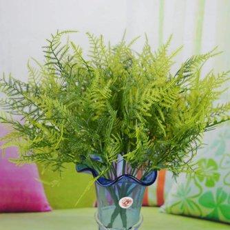 Plastic Sierasperge Plant