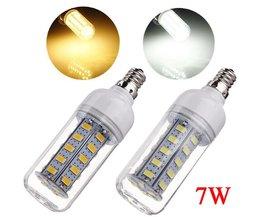 E12 LED Lamp In Twee Kleuren 7W