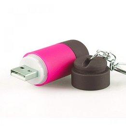 Overige Batterij Zaklampen
