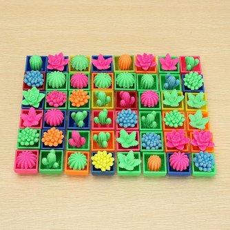 Mini Cactus voor Kinderen 48 Stuks