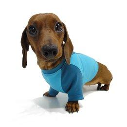 Hondenkleding & Schoenen