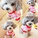 Honden Shirt