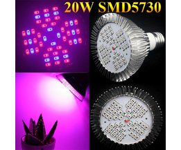 20W E27 Kweeklampen