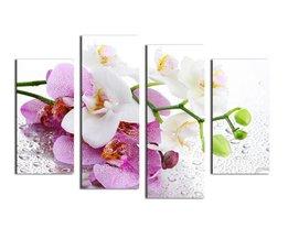 Meerluik Schilderij Met Een Orchidee