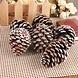 Kerstballen met Dennenappels (6 Stuks)