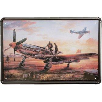 Tin metalen plaatje met vliegtuig 20x30cm