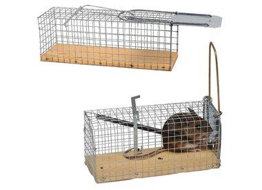 Muizen -en Rattenvallen