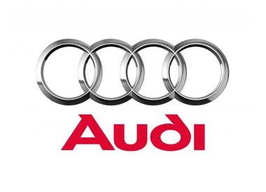Roetfilter Audi