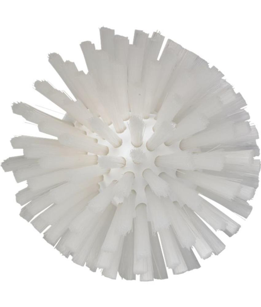 Wormhuisborstelkop