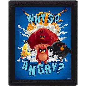 Angry Birds Why So Angry? - 3D Frame