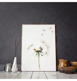 Annet Weelink Design Illustratie - Dandelion