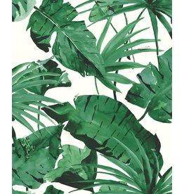 Designed for Living Jungle Behang donker groen