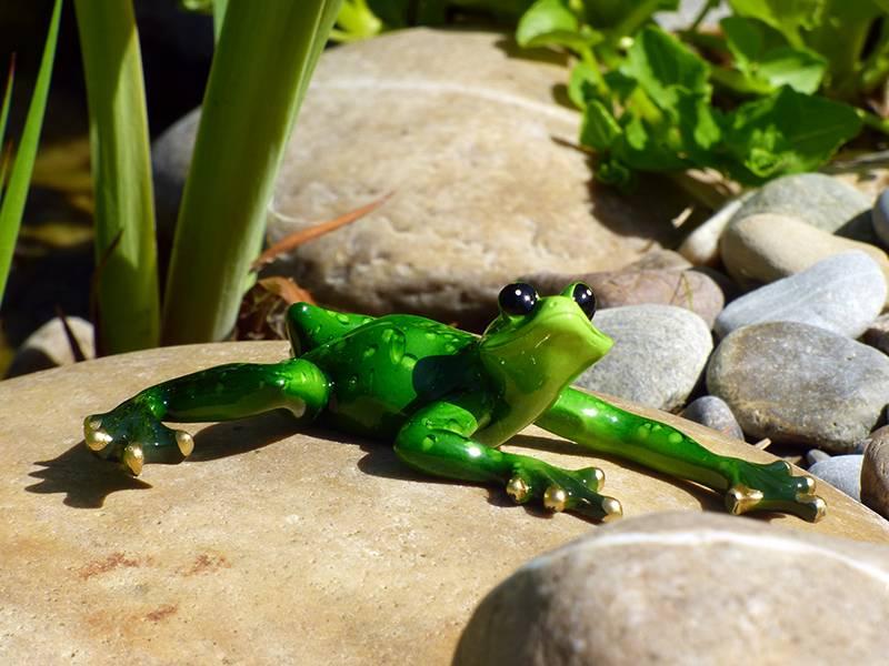 Zierlicher Frosch , liegend